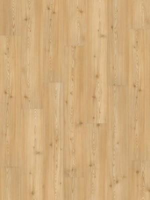 Wineo 1000 Purline PUR Bioboden Carmel Pine Wood Planken zur Verklebung