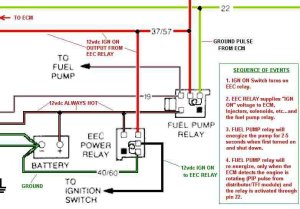 89 GT fuel pump relay and ECM confusion  Ford Mustang Forum