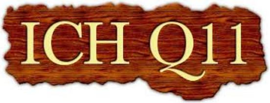 Image result for ICH Q11