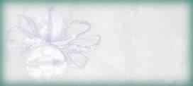 angel-blank2 (13K)