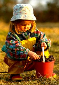 girl collecting pine cones