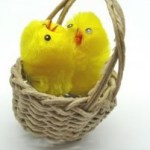 fluffy yellow easter chicks