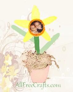 Craft Stick Photo Daffodil