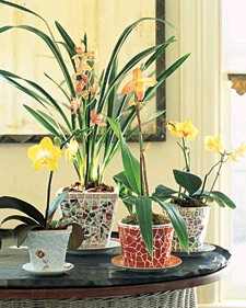 Mosaic pots made with old china.
