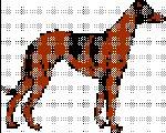 standing hound dog