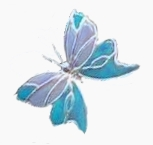 blue bottle butterfly