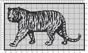 filet tiger