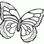 cling butterfly pattern