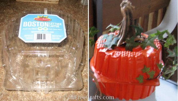 recycled lettuce container pumpkin