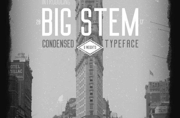 Big Stem Font Family