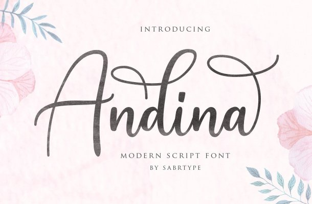 Andina Script Font