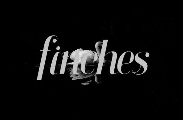 Finches Typeface