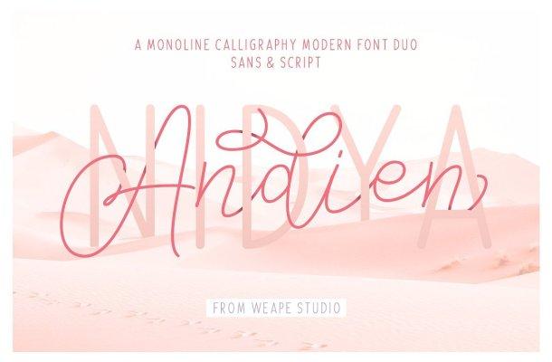 Andien Nidya Script Font
