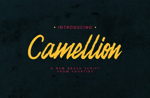 Camellion Brush Font