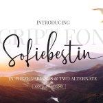 Sofiebestin Script Font