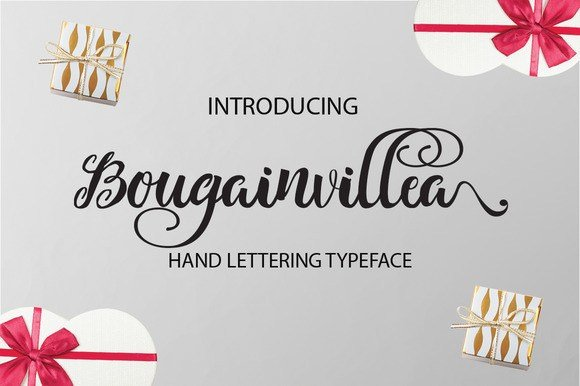 Bougainvillea Calligraphy Font