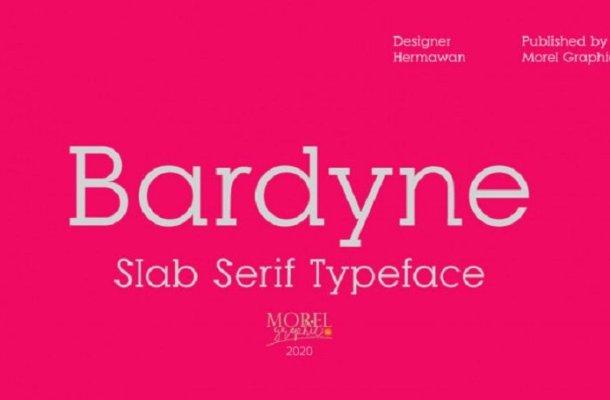 Bardyne Slab Serif Font