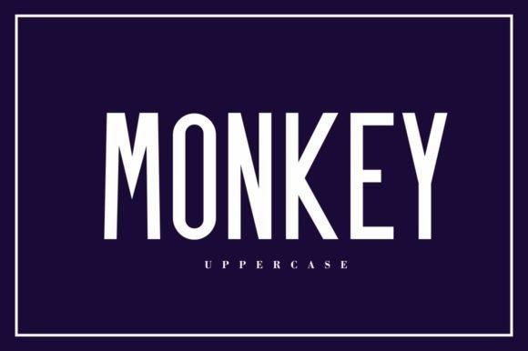 Monkey Sans Font