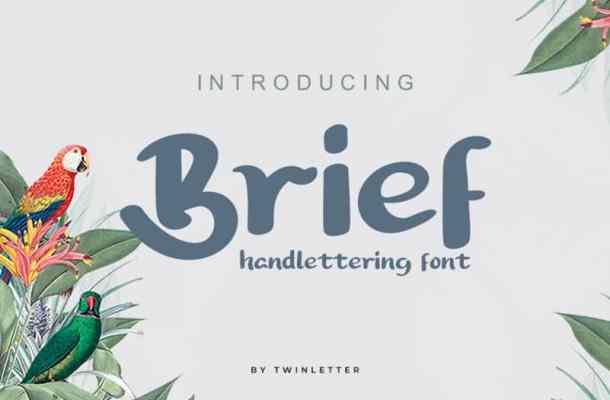 Brief Script Font