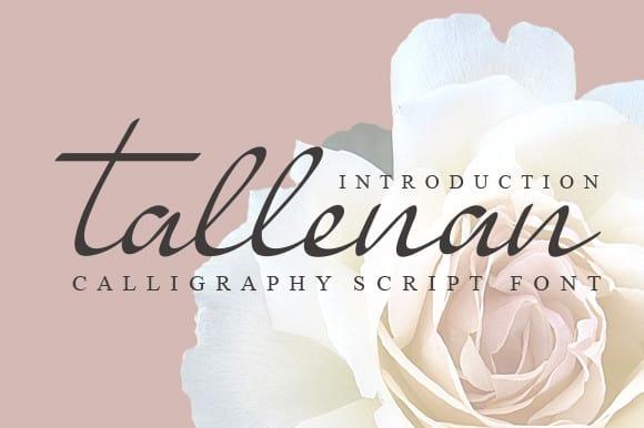Tallenan Calligraphy Font