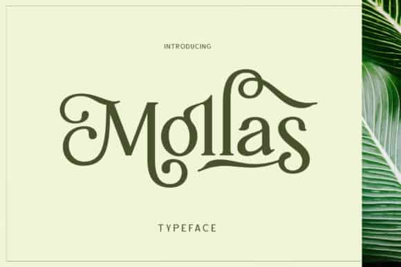Mollas Serif Font Free