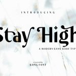 Stay High Sans Serif Font