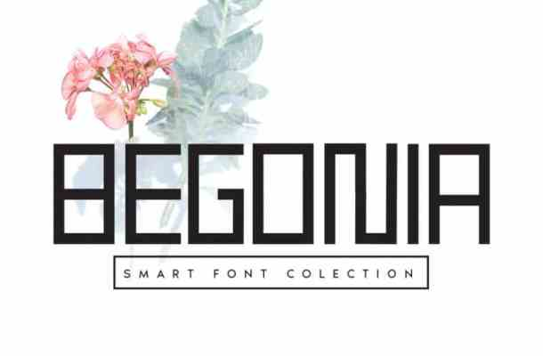 Begonia Display Font