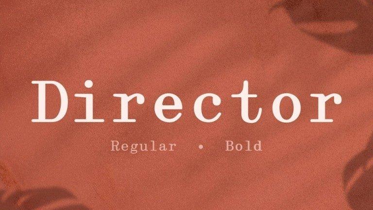 Director-3