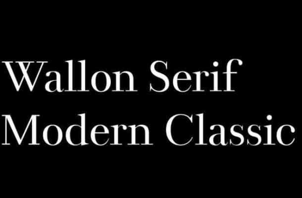 Wallon Serif Font
