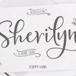 Sherilyn Script Font