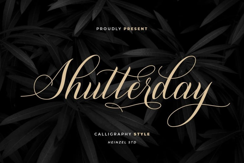 shutterday-4