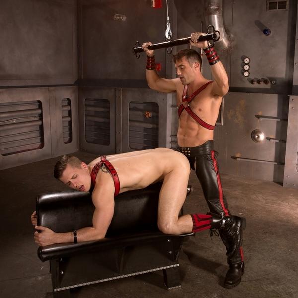 lance hart drills his pig puppy