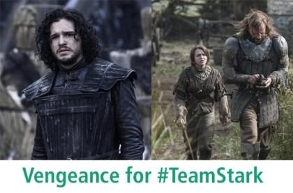 vengence-for-team-stark