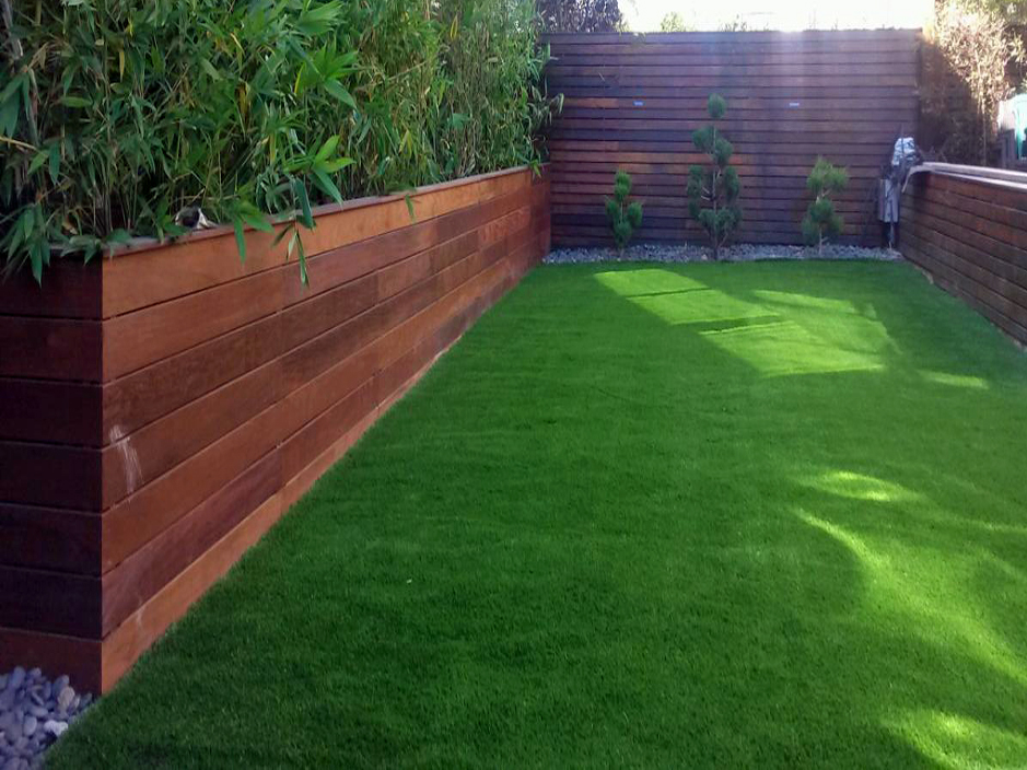Artificial Grass Abilene, Texas Home And Garden, Small ... on Artificial Grass Backyard Ideas  id=48129