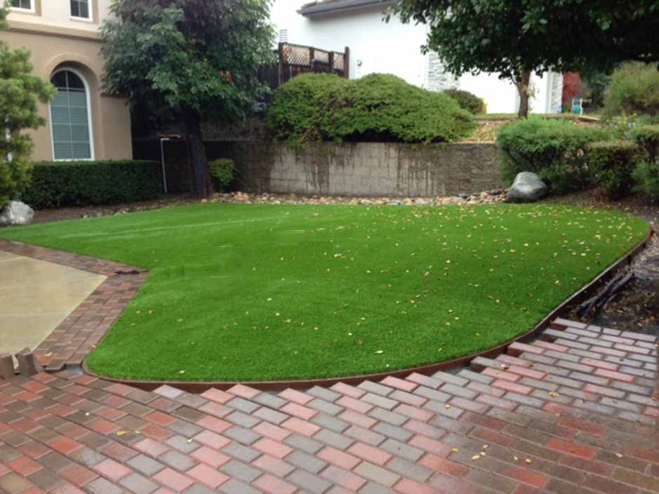 Synthetic Turf San Clemente, California Lawns, Front Yard ... on Turf Backyard Ideas id=40592