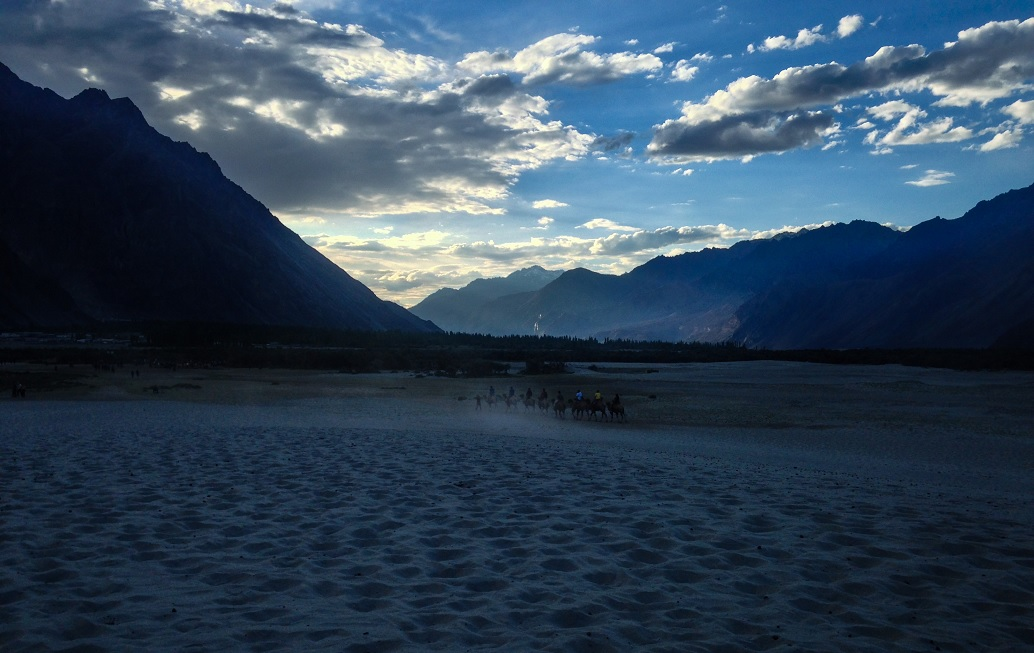 Nubra Valley: The Valley of Flowers in Ladakh