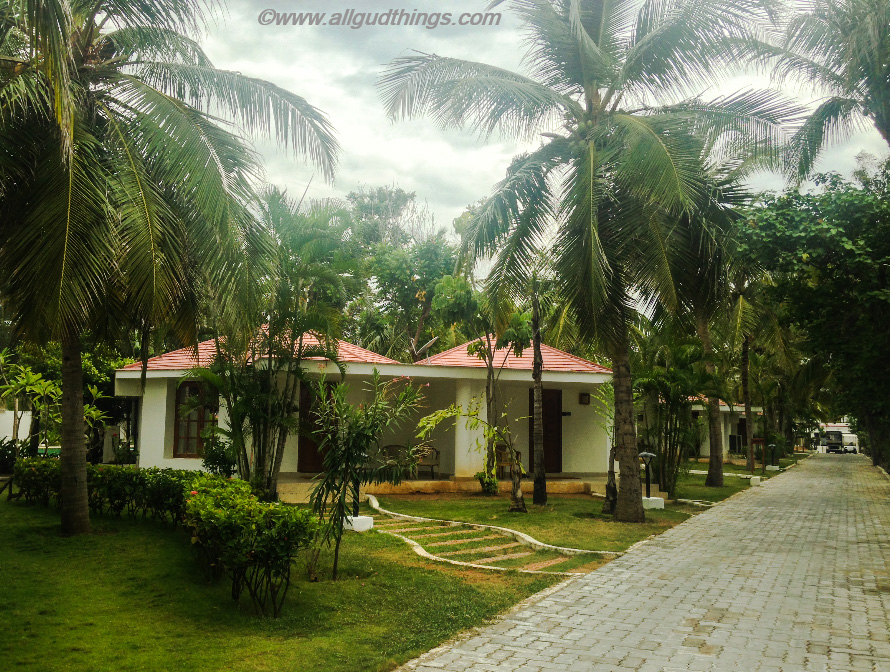 Super Deluxe Cottages at chariot Beach Resort