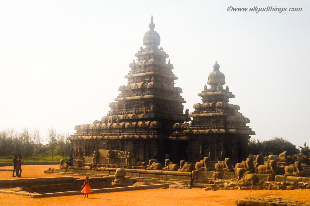 Shiva's Vahan Nandi surrounding Shore temple : Mahabalipuram Travel Guide