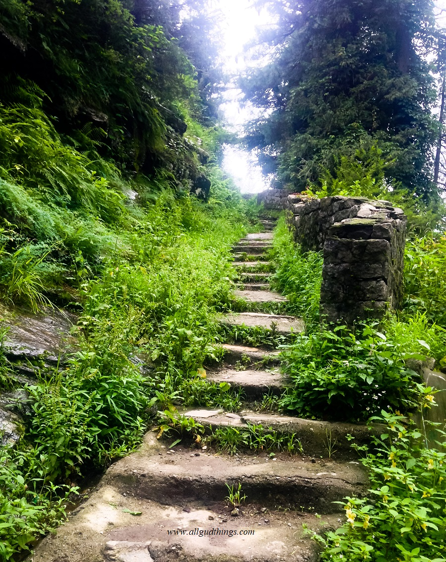 Nature trails in old manali
