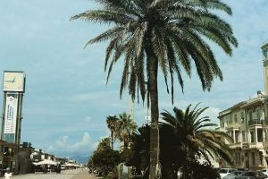 holidays to bermuda