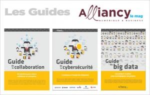 Collection guides pratiques Alliancy