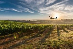 Fondée en 2011, Delair propose des offres spécifiques à l'agriculture depuis deux ans. ©DR