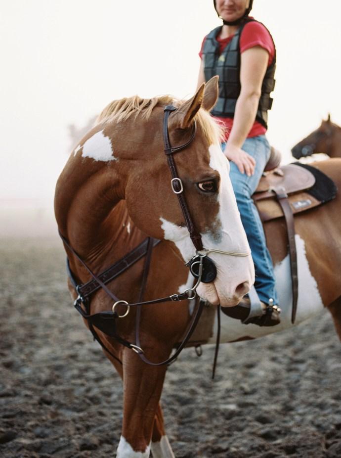 saratoga-race-track-thoroughbred-horses-equine-photography-31