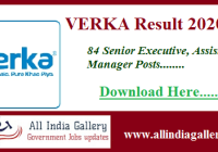 VERKA Senior Executive Result