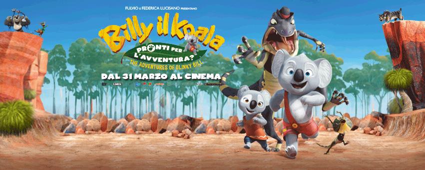 billy-il-koala