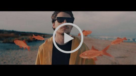 saffelli_video-538x302