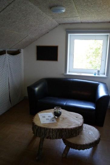 spejderjubilæum2016-35
