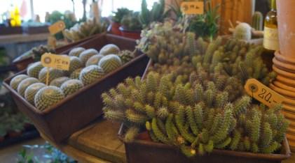 Blomsterbutikken16-08