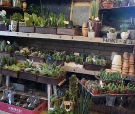 Blomsterbutikken16-09