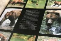 canada fotoboek met reisverslag - AllinMam.com